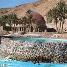 واحه قصر أبو منقار