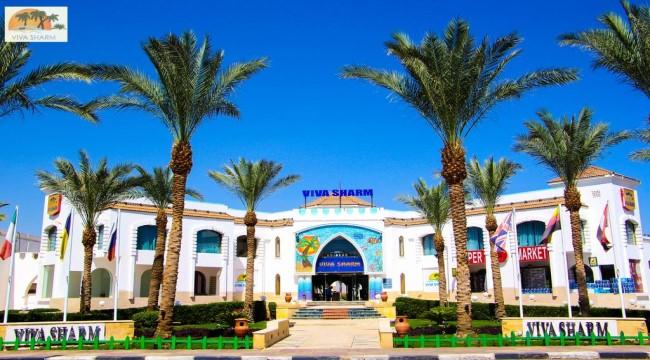 فندق فيفا شرم الشيخ